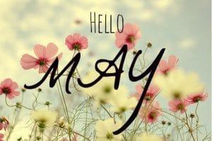tucson spa solai hello may flowers